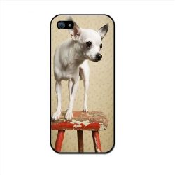 iphone 5 chihuahua
