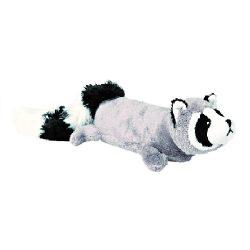 mapache chihuahua