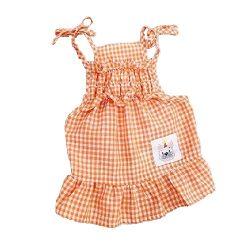 vestido naranja chihuahua